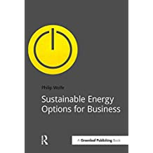 Sustainable Energy Options for Business (DoShorts) (English Edition)