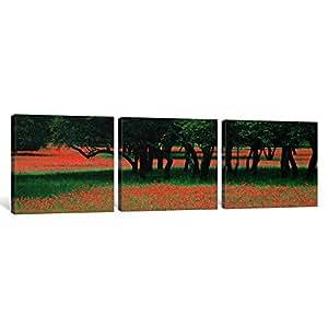 Ianvasart 3 件套印第安画刷和散散散橡木,德克萨斯山 co,德克萨斯州,美国帆布印刷品,1.5 x 48 x 16 英寸