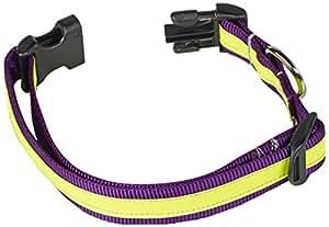 Petflect Reflective AdventurePlay Collar, Medium, Vivid Purple