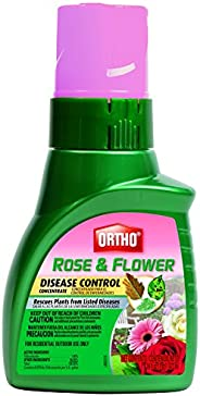 Ortho 玫瑰和花朵*控制浓缩液(6 瓶装),16 盎司
