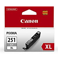 Canon.CLI-251XL 灰色墨水罐,适用于 MG7520、MG7120、iP8720 和 iX6820 Canon CLI-251XL Gray Ink 灰色墨水罐