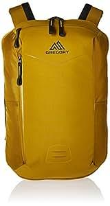 Gregory 格里高利 男式 25L 休闲商务背包 双肩包 BORDER25 第戎黄 ALL均码