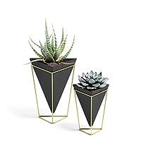 Umbra Trigg Desktop Planter Vase & Geometric Container-for Succulent, Air, Mini Cactus, Faux Plants and More, Desk, Black/Brass