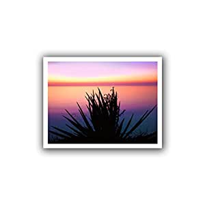 ArtWall Dean Uhlinger 'Pacific Cliff Yucca' Unwrapped Canvas Wall Art, 28 by 36-Inch