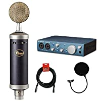 Blue Baby Bottle SL Studio 冷凝器麦克风,带 PreSonus AudioBox 录音接口,四根电缆和蓝色风屏套装