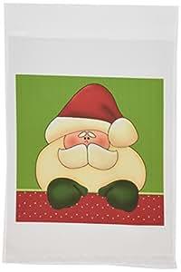 DOREEN erhardt 圣诞节系列–圣诞节圣诞老人红色和绿色假期色彩与波尔卡圆点和条纹–旗帜 12 x 18 inch Garden Flag