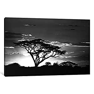 "iCanvasART 1 Piece Silhouette of Trees in a Field, Ngorongoro Conservation Area, Arusha Region, Tanzania Canvas Print by Panoramic Images, 18 x 12""/1.5"" Deep"