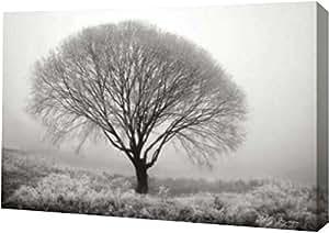 "PrintArt 的""Tranquility II BandW""由 Vitaly Geyman 创作画廊装裱艺术微喷油画艺术印刷品 24"" x 16"" GW-POD-11-PSVIT-228-24x16"