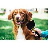 Pets First Gentlest 狗狗和猫咪自清洁切片刷 - 清除缠结垫 - 柔软的毛刷,轻松按摩舒适
