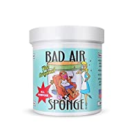 The ORIGINAL Bad Air Sponge吸收异味空气净化剂400g 6罐装 包税包邮