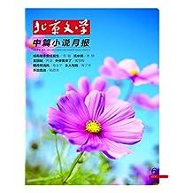 北京文学·中篇小说月报 月刊 2019年06期