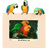 E&S 宠物 35316-12 小型鸟架
