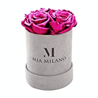 Mia Milano Infinity 玫瑰花盒 | 4 永恒永生玫瑰(3年耐用)天鹅绒花盒 (中号, 天鹅绒-亮粉色)