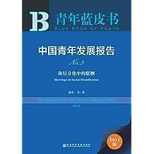 中国青年发展报告NO.3 (青年蓝皮书)