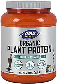 NOW Foods 诺奥 植物蛋白粉 2磅 2