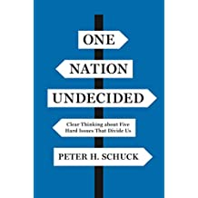 One Nation Undecided: Clear Thinking about Five Hard Issues That Divide Us (English Edition)