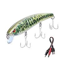 TRUSCEND 低音和鳟鱼钓鱼诱饵,Twitching 诱饵可充电 LED 慢水鱼饵带Mustad 鱼钩 淡水和海水,米诺杰克巴特