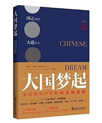 大国梦起:变动秩序中的中国发展进路.pdf
