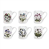 Portmeirion 植物花园水杯,6 个组合图案