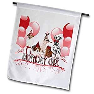 3dRose 生日女孩包时尚粉色带一触红爱狗情花园旗,30.48 x 45.72 cm