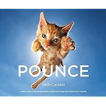 Pounce (English Edition)