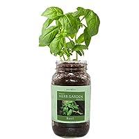 环保草本礼品套装,梅森罐装草本花园入门套件,室内包括一个梅森罐,3个可椰子种植饼干和经认证的*非转*种子(教堂)