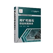 废物资源综合利用技术丛书:尾矿和废石综合利用技术
