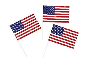 Fun Express Patriotic 塑料美国 15.24cm x 10.16cm 旗帜 - 7 月 4 日 独立日