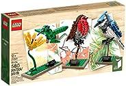 LEGO 乐高 Ideas系列 21301 积木小鸟