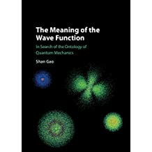 The Meaning of the Wave Function: In Search of the Ontology of Quantum Mechanics (English Edition)