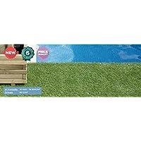 Catral 22050019 家居人造草坪,绿色,400 x 100 x 3 厘米