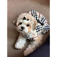Furberry 狗狗格子连衣裙小狗女孩衣服,大号,棕色