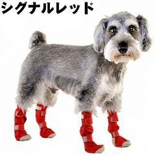 WHCY NEW DOG靴子 S 信号红色 S