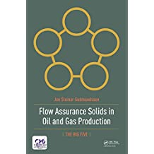 Flow Assurance Solids in Oil and Gas Production (English Edition)