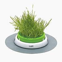 Catit Senses 2.0 草地种植器 1-包每包 1 条