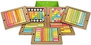 Tegu 240 片課堂磁性木質積木套裝,色調