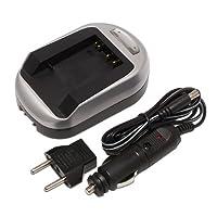 Maximal Power FC600 SAN DBL-40 Sanyo 电池快速旅行充电器(银色)
