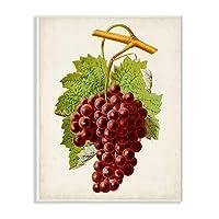 Stupell Industries 复古食品水果绘画标志和铭牌,多色