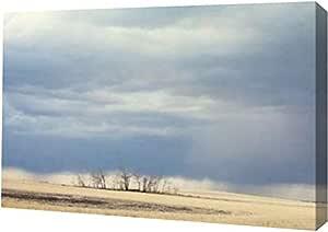 "PrintArt GW-POD-11-PSMUR-401-24x16""A Little Rain"" 由 Roberta Murray 创作画廊装裱艺术微喷油画艺术印刷品 黑色 12"" x 8"" GW-POD-11-PSMUR-401-12x8"
