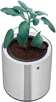 WMF 福腾宝 Ambient 草本@home 单根电动*花园(适用于1个花盆,草本锅带自灌溉系统长达4天,Easy touch LED照明)