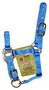 """Hamilton 可调节尼龙吊带适用于 foals 浆果色 12"""" X 6.5"""" X 1.5"""""""