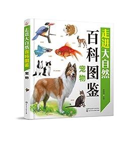 """""""宠物"""",作者:[董枝明]"""