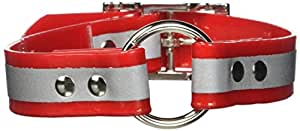 """OmniPet Sunglo Reflective Ring in Center Dog Collar, 1 x 19"""", Red"""