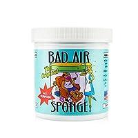 Bad Air Sponge 空气净化剂去除甲醛 新房装修汽车除异味除臭剂 (一瓶)