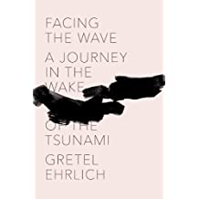 Facing the Wave: A Journey in the Wake of the Tsunami (English Edition)
