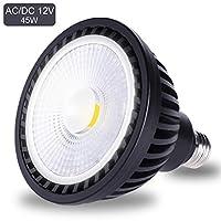 Wiyifada AC/DC 12V LED SPA 灯泡 45W 6000K 日光白 LED 游泳池灯泡 E26 灯座 可替换高达 200-600W 传统灯泡 - 不可调光