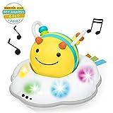 Skip Hop Explore & More Follow-Me Bee Crawl 玩具,黄色