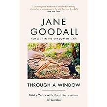 Through A Window (English Edition)