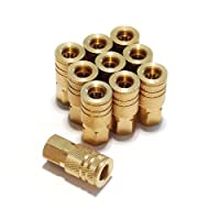 Primefit IC1414FB6-B10-P 1/4 英寸 6 球黄铜母工业耦合器承包包,10 件