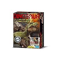 4M 考古探索系列 科學探索益智教育玩具 侏羅紀恐龍 霸王龍/暴龍